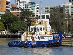 Kookaburra Queen Lunch Cruise (pitdroidtech) Tags: tugboat allunga brisbane