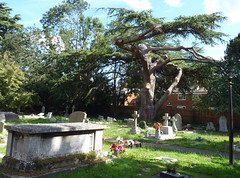 St Mary's Church, Langley, Slough (3) (karenblakeman) Tags: stmaryschurch church churchyard trees graves langley langleymarish slough berkshire 2019 september uk