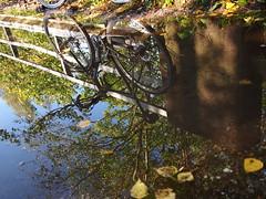 2019 Bike 180: Day 211, September 15 (olmofin) Tags: 2019bike180 finland bicycle puddle reflection lätäkkö heijastus silta bridge lumix 14mm f25