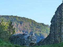 2019 Germany // WW-Lahnhöhenweg // Dausenau (maerzbecher-Deutschland zu Fuss) Tags: wanderweg wandern deutschland germany maerzbecher deutschlandzufuss deutschlandzufus rheinlandpfalz 2019 lahnhöhenweg l wwlahnhöhenweg ww westerwald dausenau