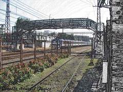 102 V.A.Jr Gimp  Museu do Imigrante São Paulo SP A640 Set19 (6) (Vivaldo Armelin Jr.) Tags: trem urbano ferrovia locomotiva museu do imigrante são paulo sp brasil urban train railway locomotive immigrant museum sao brazil