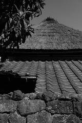 DSCF1990 (Keishi Etoh rough-and-ready photoglaph) Tags: fujinonxf23mmf14r fujifilm fujinon fuji 350mm primelens fixedfocallengthlens 単焦点 準広角 島原 shimabara xh1 fujifilmxh1 apsc