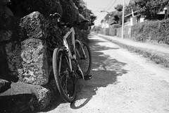 DSCF1980 (Keishi Etoh rough-and-ready photoglaph) Tags: fujinonxf23mmf14r fujifilm fujinon fuji 350mm primelens fixedfocallengthlens 単焦点 準広角 島原 shimabara xh1 fujifilmxh1 apsc
