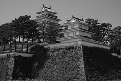 DSCF1974 島原城 (Keishi Etoh rough-and-ready photoglaph) Tags: 島原 shimabara fujifilm xh1 fujifilmxh1 apsc