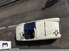 Austin Healey 100S (jane_sanders) Tags: goodwood westsussex sussex goodwoodrevival revival motorcircuit testing test austinhealey100s austin healey 100s