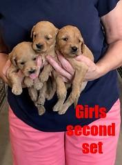 Kasey Girls second set pic 3 9-14