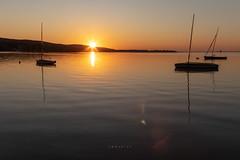 (zedspics) Tags: sunrise keszthely balaton magyarország hungary hongarije sailing boat chill 1909 reflection zedspics