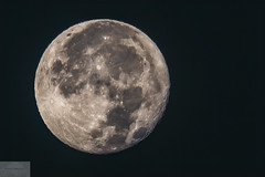 Full Wyoming Moon (Wycpl) Tags: fullmoon wyoming jcpphotography