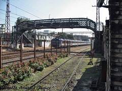 102 V.A.Jr Gimp  Museu do Imigrante São Paulo SP A640 Set19 (3) (Vivaldo Armelin Jr.) Tags: trem urbano ferrovia locomotiva museu do imigrante são paulo sp brasil urban train railway locomotive immigrant museum sao brazil