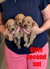 Kasey Girls second set pic 2 9-14