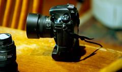 d800 (bluebird87) Tags: nikon d800 f100 film dx0 c41 epson v800 kodak ektar lightroom jobo camera
