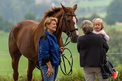 A7306208_s (AndiP66) Tags: kva pferdesporttage mettmenstetten kavallerieverein bezirk affoltern reitanlage grüthau 14september2019 september 2019 springen pferd horse schweiz switzerland kantonzürich cantonzurich concours wettbewerb horsejumping equestrian sports springreiten pferdespringen pferdesport sport sony sonyalpha 7markiii 7iii 7m3 a7iii alpha ilce7m3 sonyfe70300mmf4556goss fe70300mm 70300mm f4556 emount andreaspeters
