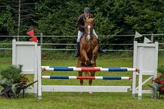 A7306197_s (AndiP66) Tags: kva pferdesporttage mettmenstetten kavallerieverein bezirk affoltern reitanlage grüthau 14september2019 september 2019 springen pferd horse schweiz switzerland kantonzürich cantonzurich concours wettbewerb horsejumping equestrian sports springreiten pferdespringen pferdesport sport sony sonyalpha 7markiii 7iii 7m3 a7iii alpha ilce7m3 sonyfe70300mmf4556goss fe70300mm 70300mm f4556 emount andreaspeters