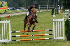A7306193_s (AndiP66) Tags: kva pferdesporttage mettmenstetten kavallerieverein bezirk affoltern reitanlage grüthau 14september2019 september 2019 springen pferd horse schweiz switzerland kantonzürich cantonzurich concours wettbewerb horsejumping equestrian sports springreiten pferdespringen pferdesport sport sony sonyalpha 7markiii 7iii 7m3 a7iii alpha ilce7m3 sonyfe70300mmf4556goss fe70300mm 70300mm f4556 emount andreaspeters