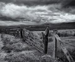 Across the moors (Tim Ravenscroft) Tags: moorland denbigh northwales gate landscape clouds stormy monochrome blackandwhite blackwhite hasselblad hasselbladx1d