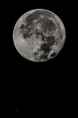 I.S.S. & Luna Llena (Luis Pitarque García) Tags: iss estaciónespacialinternacional iinternationalspacestation luna lunallena fullmoon moon space spaceandaastronomy astronomía espacioyastronomía astrofotografía astrophotography astronomicalphotography night nightphotography sky cielo cielosdeteruel cieloslimpios