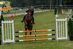 A7306083_s (AndiP66) Tags: horse schweiz switzerland september concours pferd equestrian mettmenstetten horsejumping wettbewerb springen 2019 bezirk kva kantonzürich affoltern kavallerieverein cantonzurich reitanlage pferdesporttage 14september2019 grüthau sports sport sony alpha 70300mm 7m3 f4556 pferdesport sonyalpha springreiten andreaspeters 7iii pferdespringen emount fe70300mm a7iii sonyfe70300mmf4556goss ilce7m3 7markiii