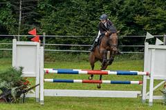 A7306066_s (AndiP66) Tags: kva pferdesporttage mettmenstetten kavallerieverein bezirk affoltern reitanlage grüthau 14september2019 september 2019 springen pferd horse schweiz switzerland kantonzürich cantonzurich concours wettbewerb horsejumping equestrian sports springreiten pferdespringen pferdesport sport sony sonyalpha 7markiii 7iii 7m3 a7iii alpha ilce7m3 sonyfe70300mmf4556goss fe70300mm 70300mm f4556 emount andreaspeters