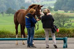 A7306201_s (AndiP66) Tags: kva pferdesporttage mettmenstetten kavallerieverein bezirk affoltern reitanlage grüthau 14september2019 september 2019 springen pferd horse schweiz switzerland kantonzürich cantonzurich concours wettbewerb horsejumping equestrian sports springreiten pferdespringen pferdesport sport sony sonyalpha 7markiii 7iii 7m3 a7iii alpha ilce7m3 sonyfe70300mmf4556goss fe70300mm 70300mm f4556 emount andreaspeters