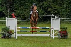 A7306198_s (AndiP66) Tags: kva pferdesporttage mettmenstetten kavallerieverein bezirk affoltern reitanlage grüthau 14september2019 september 2019 springen pferd horse schweiz switzerland kantonzürich cantonzurich concours wettbewerb horsejumping equestrian sports springreiten pferdespringen pferdesport sport sony sonyalpha 7markiii 7iii 7m3 a7iii alpha ilce7m3 sonyfe70300mmf4556goss fe70300mm 70300mm f4556 emount andreaspeters