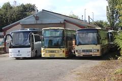 York Pullman (yorkcoach2) Tags: york yorkpullman miw5785 b628msf dm17aaa temsa vanhool plaxton ace puma leyland