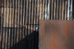 mild steel and corrugated iron (DSM888) Tags: corrugated iron rust