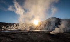Steamy Sunrise (MrBlackSun) Tags: eltatio eltatiogeysers chile nikon d850 sunrise atacama atacamadesert altiplano altiplanos damp vapour geyser geysers landscape landscapephotography