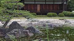 KYOTO Nijō-jō (paola_carobbi) Tags: kyōto japan nijōjō nijocastle shogun ninomarupalace feudalera gardens