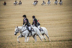 _HUN1263 (phunkt.com™) Tags: riding ride of the marches edinburgh common 2019 horses phunkt phunktcom keith valentine