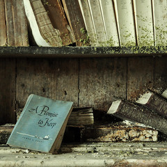 A Promise to Keep (Jana_Apergis) Tags: church decay detroit urbex abandoned urbanexploration crumbling hymn books moss library bookshelves