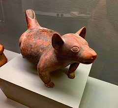 Polk Museum of Art (ktmqi) Tags: polkmuseumofart florida floridasoutherncollege artmuseum precolumbian ceramics decorativearts canineeffigy colimaculture