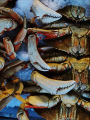 Claws (Stephen Braund) Tags: food crab seattle market pattern pikeplacemarket