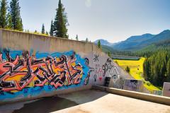 Modern Nature (silver_ring) Tags: 24120 graffiti nature juxtaposition dam concrete patrick