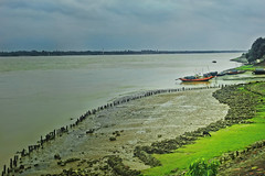 On one monsoon day !! (Lopamudra !) Tags: lopamudra lopamudrabarman lopa landscape gadiara ruralbengal rural river water waterscape monsoon boat green pastoral field rupnarayan westbengal india beauty beautiful picturesque