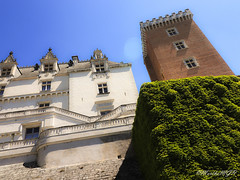 Château de Pau, France (Martha MGR) Tags: pau france château pyrénéesatlantiques nouvelleaquitaine architecture
