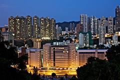 Happy Valley Night (RunnyInHongKong) Tags: happyvalley hongkong night racetrack mountbutler