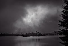 Dawn (JD's Photography) Tags: greybrucehighlands ontario eugenialake canada dawn morning fog canadagoose canadageese sonya7riii sony70200f4 mist bw bn silhouette lowkey jdsphotography