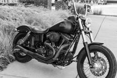 Satin Black Harley in Front of the Brewery (sharon.verkuilen) Tags: frankenmuthmichigan sonya7rii harleydavidson zeiss blackwhite monochrome motorcycle
