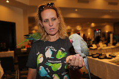 AFA 2019 QPS Group Shots - Various (QuakerVille) Tags: qps quaker parrots afa conference 2019 jonmarkdavey orlando hotelb afa2019qpsgroupshotsvarious lakebuenavista florida unitedstates