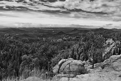 Hilltops, Forest and Mountains That Stretch to the Far off Horizon (Black & White, Custer State Park) (thor_mark ) Tags: azimuth205 blackwhite blackhills camranger capturenx2edited colorefexpro custerstatepark evergreentrees evergreens greatplains hillsideoftrees landscape lookingssw mountains mountainsindistance mountainsoffindistance nature needleshighway needleshighwayscenicoverlook nikond800e northamericaplains outside pahásápa project365 rollinghillsides sdhwy87 silverefexpro2 southdakotahwy87 southernblackhills trees southdakota unitedstates