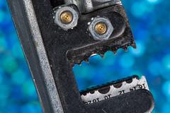 Arrrrrrghh! (jeff's pixels) Tags: macromondays face funny macro wirestripper nikon d500 bird bus plane train car tool