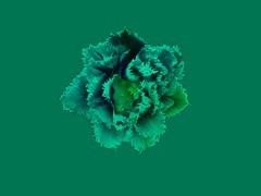 Green (Taymaz Valley) Tags: digitalart digitalism photoart photography photographer ottawa ottawaphotography montreal toronto vancouver london tokyo kyoto paris berlin japan iran iranian persian tehran art artist love nyc losangeles