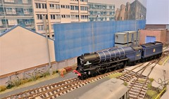 Tornado Arrives at Foxwell Lane Depot. (ManOfYorkshire) Tags: 60163 tornado steam engine loco locomotive tender foxwelllane depot shed small layout train railway 176 scale oogauge burgesshill exhibition show 2019 blue