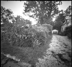 old driveway, garage, sidewalk, curb, into the sun, neighborhood, Asheville, NC, 6x6 pinhole camera, Ilford FP4+, HC-110 developer, August 2019 (steve aimone) Tags: driveway curb sidewalk garage landscape asheville westasheville northcarolina 6x6pinholecamera 6x6 pinhole ilfordfp4 hc110developer 120 120film film mediumformat monochrome monochromatic blackandwhite