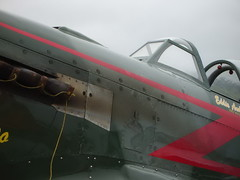 "Yakovlev Yak-9UM 33 • <a style=""font-size:0.8em;"" href=""http://www.flickr.com/photos/81723459@N04/48741155528/"" target=""_blank"">View on Flickr</a>"