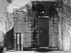 Door in the Cinder Blocks (Nick Condon) Tags: abstract blackandwhite block door oakpark olympus45mm olympusem10 vine wall