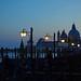 blue hour - Basilica di Santa Maria della Salute - Venice - April 2019