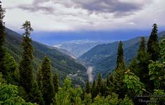 Nathiagali (Shehzaad Maroof Khan) Tags: nathiagali pakistan greenpakistan galayat himalayas beautifulpakistan