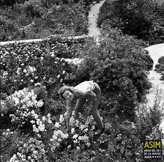 Sally Hunter (Arxiu del So i de la Imatge de Mallorca) Tags: majorca mallorca women mujeres dones gardens jardins jardines