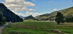 La vallée de la Thur (mrieffly) Tags: alsace htrhin valléedelathur pistecyclable vosges kruth